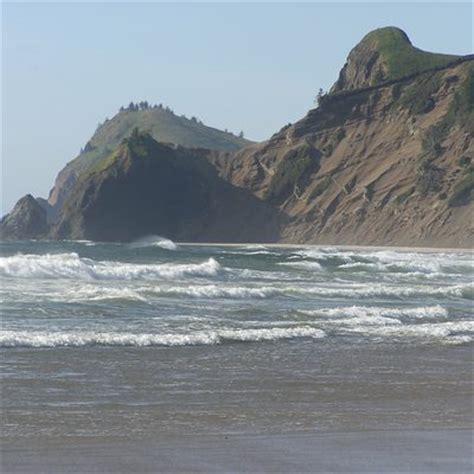 pet friendly hotels in lincoln city pet friendly motels in lincoln city oregon usa today
