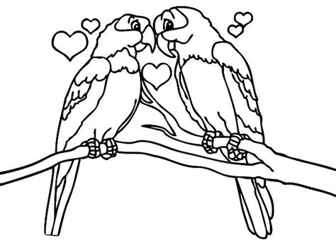 coloring pictures of lovebirds love bird coloring pages vitlt com