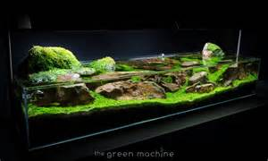 aquascape tutorial guide continuity by findley