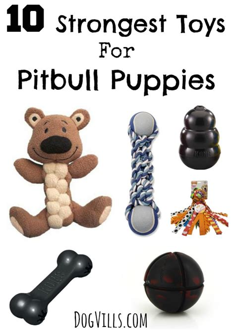 best toys for pitbull puppies 10 strongest toys for pitbull puppies dogvills