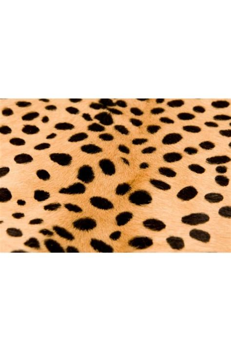 cowhide rug maintenance leopard print cowhide rug australian leather australian made ugg boots