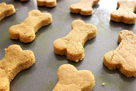 turmeric treats turmeric biscuit recipe lola the pitty