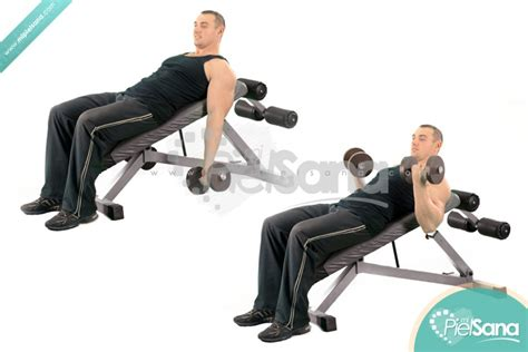incline bench bicep curls incline dumbbell curl