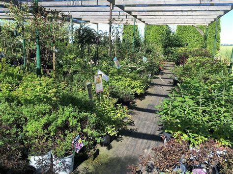 craigslist farm and garden ok