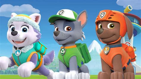 paw patrol everest paw patrol rocky and everest www pixshark com images