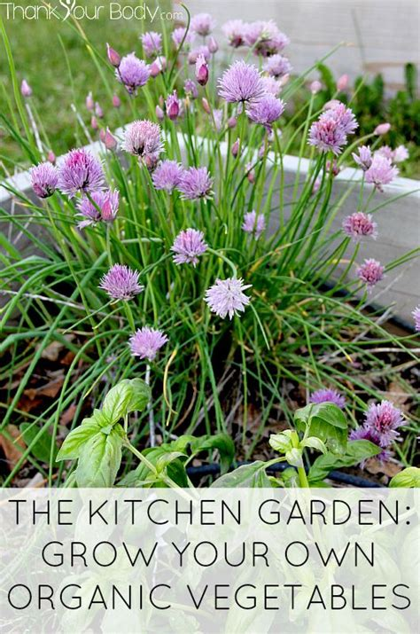 Grow Your Own Organic Fruit by The Kitchen Garden Grow Your Own Organic Vegetables