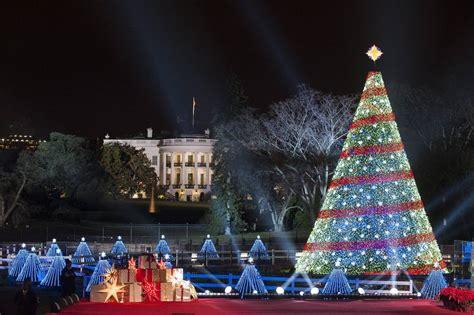 los 225 rboles de navidad m 225 s espectaculares del mundo