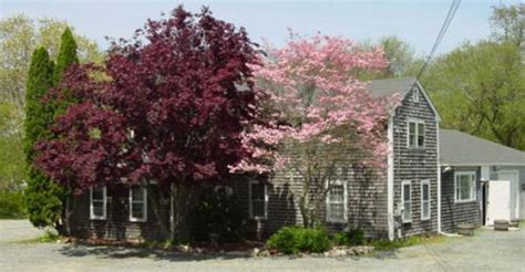Top 20 Things To Do In Sandwich Ma On Tripadvisor Sandwich Attractions Find What