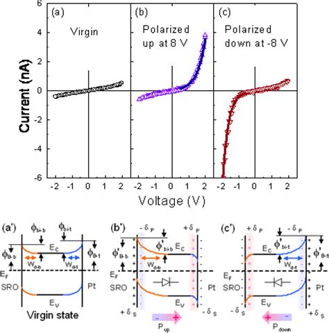 back to back schottky diode polarization modulated conduction and novel resistive memory in epitaxial bfo thin