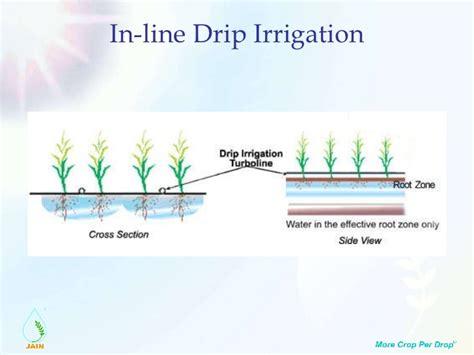 28 best drip irrigation cost estimate drip irrigation system design basic aspects technical