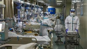 south china university  technology concludes killer
