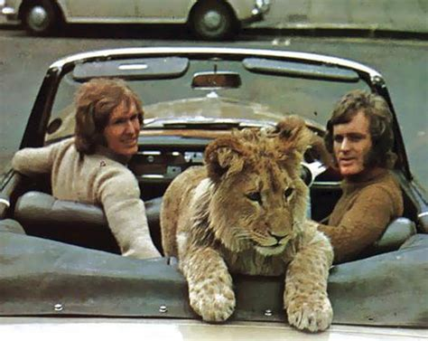 film a lion called christian a lion called christian and others book reviews