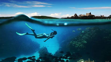 Bali Diving Package zero gravity diving bali experience the best dives in bali