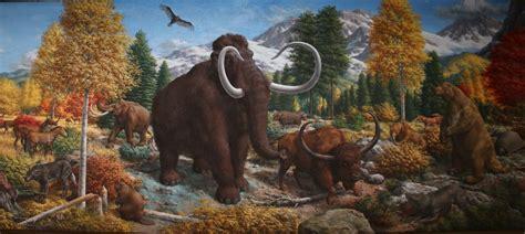 peabody virtual background images education yale peabody museum  natural history