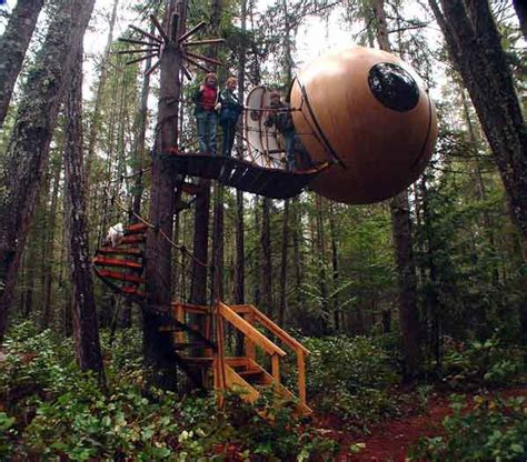amazing tree houses tree houses the 8 most amazing tree houses ever