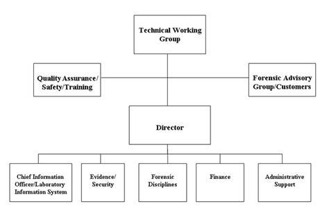 fbi organizational chart fbi figure 1 an efficient organizational structure for
