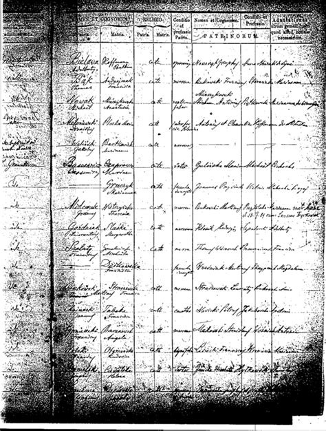 Schenectady Birth Records Halgal Genealogy Of Halychyna Eastern Galicia