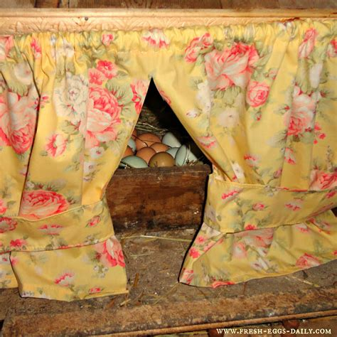 chicken house curtains 7 reasons to hang chicken nesting box curtains