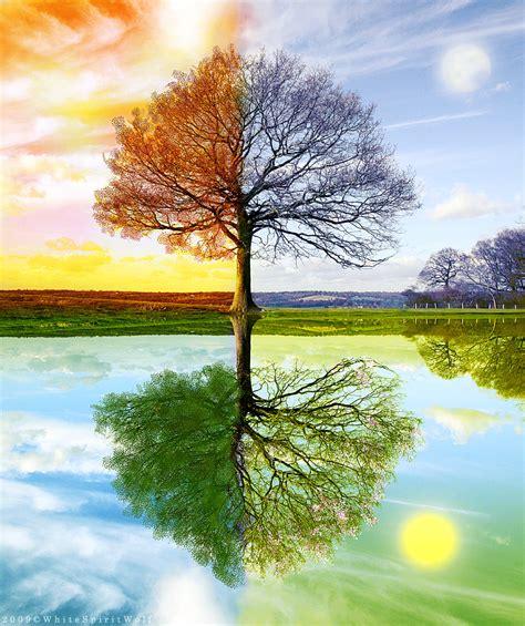 The Four Seasons 4 Seasons By Whitespiritwolf On Deviantart