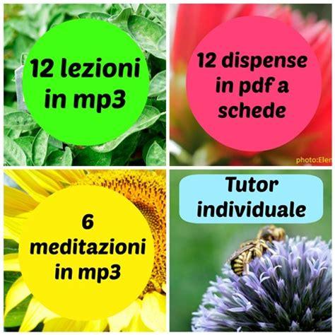 fiori di bach acquisto on line il corso su psico aromaterapia e fiori di bach oli