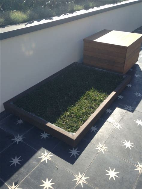 litter box a yorkie and the city large doggie litter box with real grass that dogs to use see