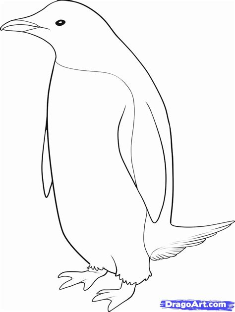 emperor penguin pictures to print az coloring pages