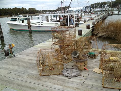 boat sales eastern shore md maryland eastern shore art gallery the hull truth