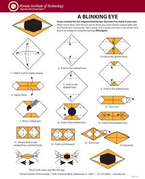 origami blinking eye take a study with origami florida tech ecurrent