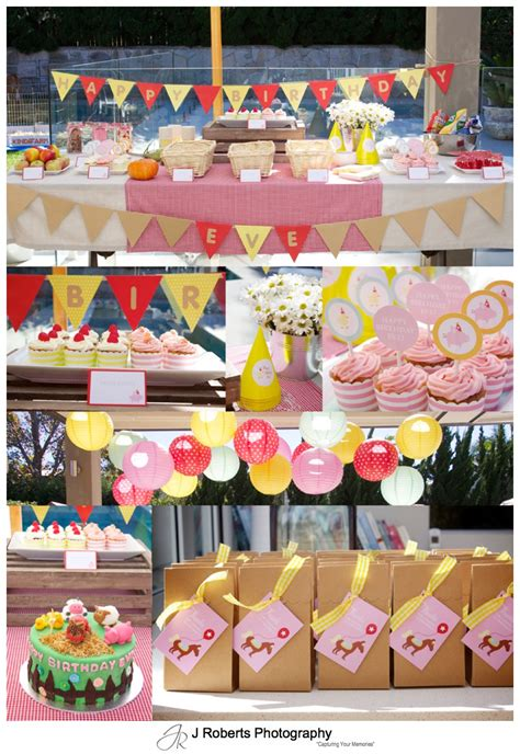 farm themed birthday decorations farm themed birthday 1st birthday for