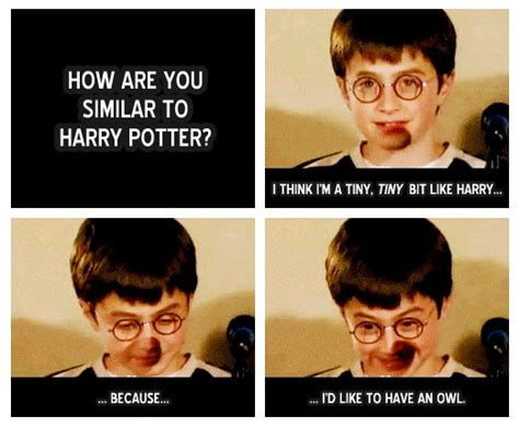Daniel Radcliffe Meme - young daniel radcliffe my childhood pinterest