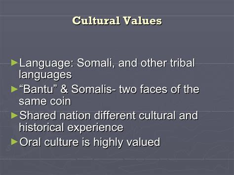Kpi And Other Mba Language by Somali Cultural Awarenes