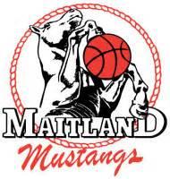 maitland mustangs news maitland basketball fox sports pulse