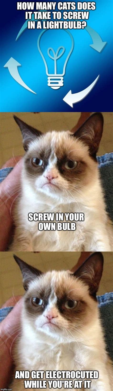 Make Your Own Grumpy Cat Meme - grumpy cat imgflip
