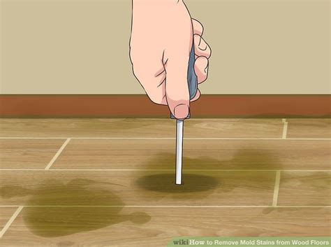 Removing Stains From Hardwood Floors by How To Remove Mold Stains From Wood Floors With Pictures