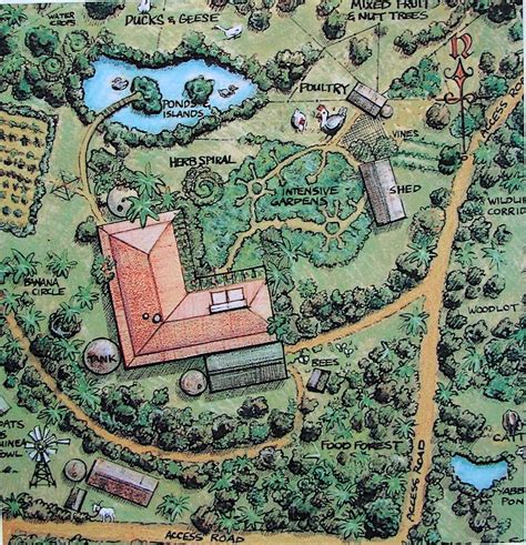 Permaculture Garden Layout Best 25 Permaculture Design Ideas On Pinterest Permaculture Companion Gardening And Insect