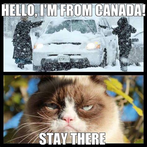 Grumpy Cat Snow Meme - grumpy cat meme grumpycat grumpy cat pinterest