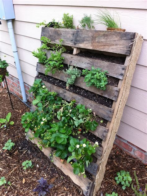 diy vertical strawberry garden ideas