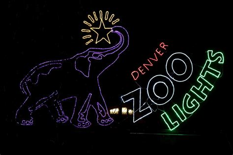 how to save on denver zoo lights tickets mile high on