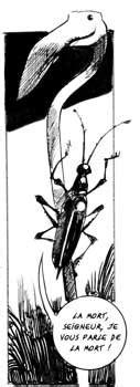 Actualité Bande Dessinée : Mosquito fête 10 ans d'édition
