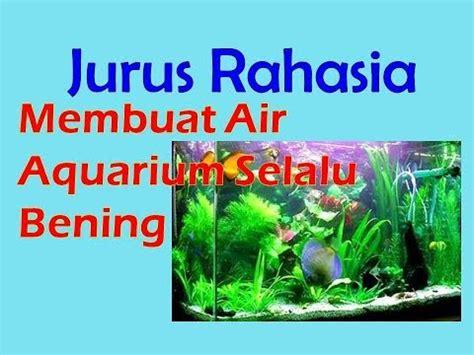 Pakan Ikan Louhan Agar Cepat Besar tips menentukan besarnya pompa air pada aquarium louhan