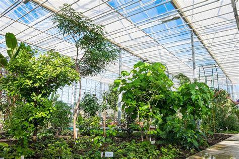 Q20403430 Wikidata Q Botanical Garden