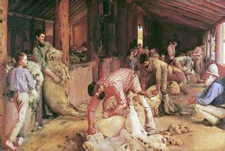 tom shearing the rams spaces between the gaps creative cauldron tom