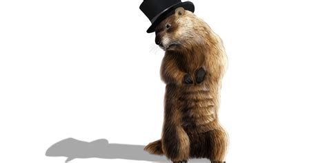 groundhog day you don t me work remotely don t hide like a groundhog build better