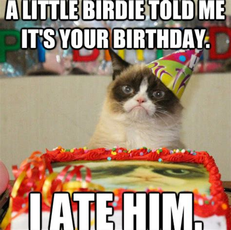 Grumpy Cat Happy Birthday Meme - image gallery happy birthday grumpy cat