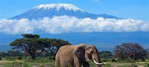 kenya or tanzania safari better reiservaringen kenia reisverhalen tips kenia reizen