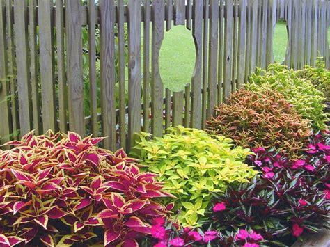 Summer Garden Ideas Landscaping Ideas And Hardscape Design Hgtv