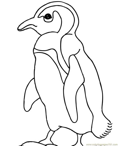 cute penguin clip art black and white sketch coloring page