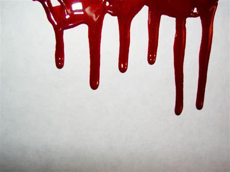 test sangue un test sangue preveder 224 la durata della vita blue