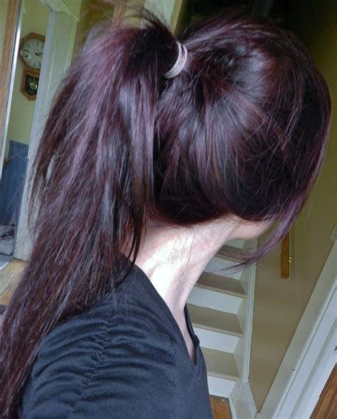 chocolate plum hair color dark plum brown hair color in 2016 amazing photo