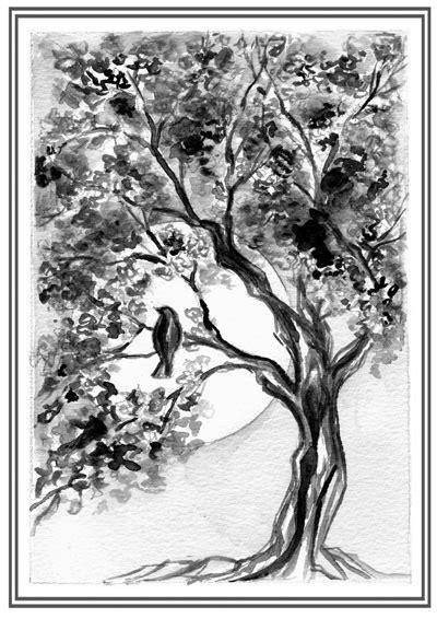 mahogany tree coloring page free coloring pages of mahogany tree